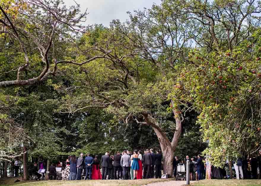 Ceremonia Civil de boda en el Pazo de Orto